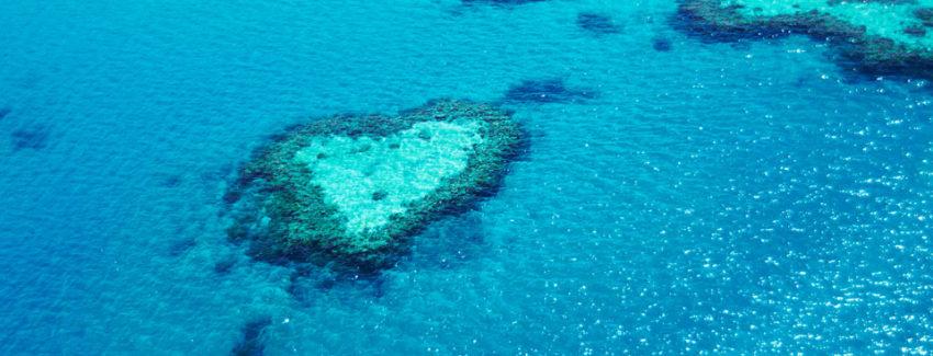 heart reef_AZ